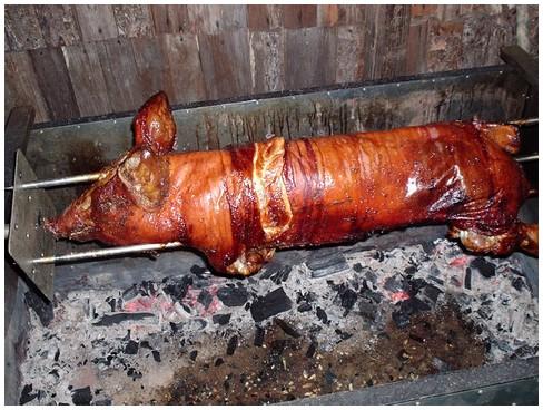 porco_no_rolete